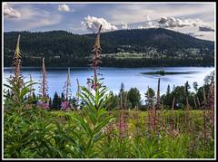 De Roches lake