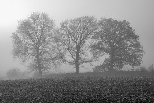 *Three sisters in the december fog*