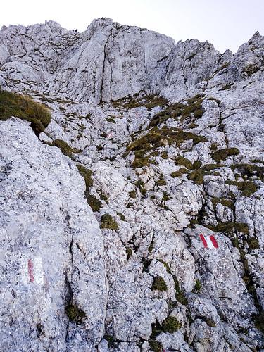 Der letzte Anstieg - Kammspitze über Öfen, Viehbergalm und Miesbodensee am Dachsteinmassiv