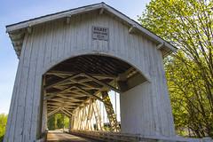 Gilkey Covered Bridge - Peter Murphy