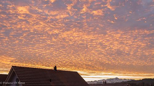 sunrise #)1912-6244-4