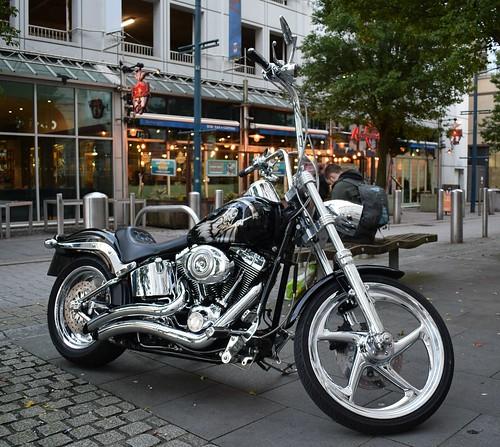 Harley-Davidson FXSTC Motorcycle