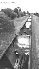 train on the Unanderra line