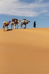 Camel caravan in the Amatlich erg, Sahara, Mauritania