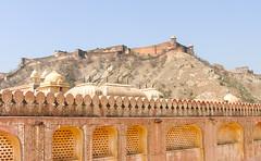 13299-Jaipur