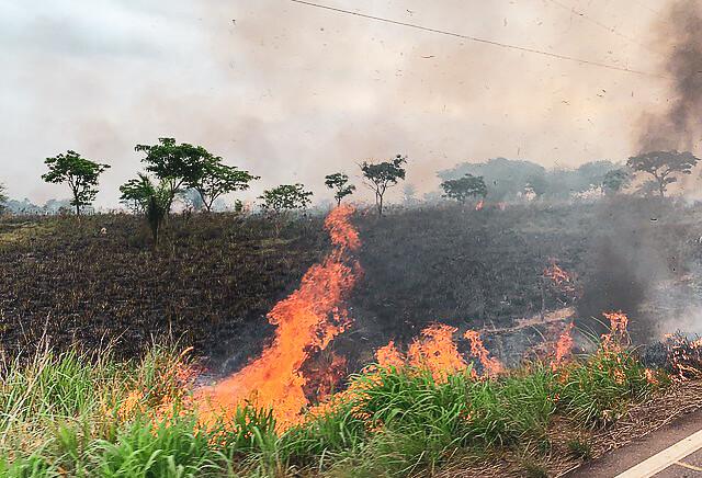 Desmatamento é o primeiro passo da grilagem. Registro de queimadas na BR-155, em Eldorado do Carajás, no Pará - Créditos: Catarina Barbosa/Brasil de Fato