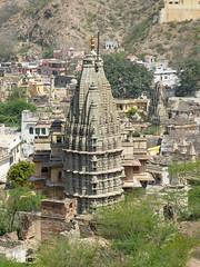13353-Jaipur