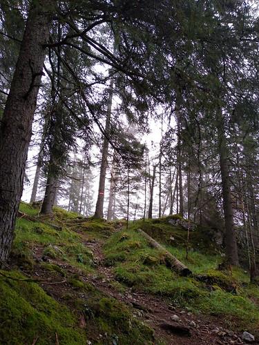 Wanderung auf den Kufstein über Gradenbachfall, Ahornsee, Grafenbergsee und Grafenbergalm im Dachsteinmassiv
