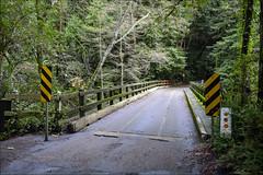 Bridge Over the San Lorenzo River