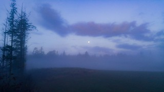 full moon and the mist