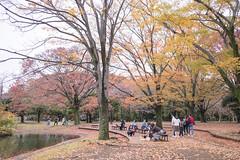 JAPAN.2019.098