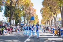 JAPAN.2019.067