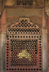 11197-Delhi