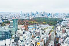 JAPAN.2019.083