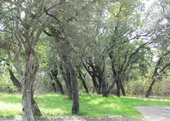 Heart of Texas Roadside Park