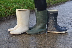 337 -- Collection of wellies -- Rubberboots -- Gummistiefel -- Regenlaarzen