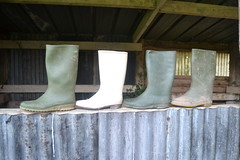 336 -- Collection of wellies -- Rubberboots -- Gummistiefel -- Regenlaarzen