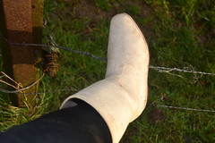 339 -- White wellies from Hevea -- Rubberboots -- Gummistiefel --Hevea Regenlaarzen