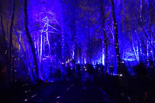Light/Colours Fairy-tale in Antwerpen
