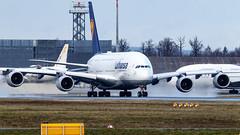 """D-AIMM Lufthansa A388 FRA """"Delhi"""""""