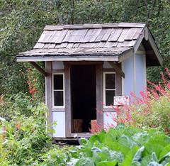 Garden shed in the vegetable garden