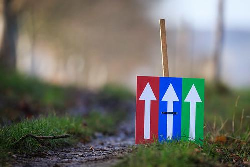 MESCHERBERGLOOP 2019   THE RIGHT DIRECTION DISTANCE 15, 10 EN 5 KM