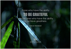 Steve Maraboli Those who have the ability to be grateful are the ones who have the ability to achieve greatness