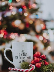 Selective focus photography of ceramic mug near candy cane - Credit to https://homegets.com/
