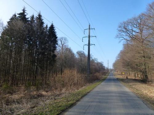2012-03-13_P1000327 (4)
