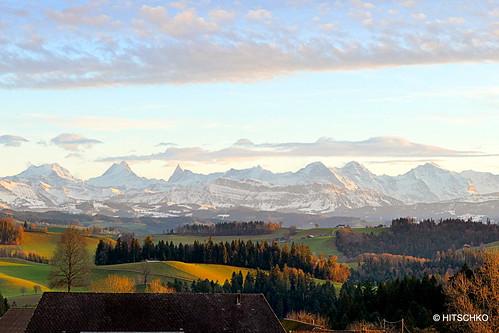 Heimsiwil-Kaltacker Rothenaum