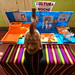 Exposición de Maquetas - Culturas Andinas