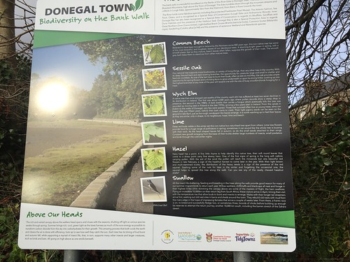 Clackamas Day 3 Donegal Town Belleek  (76)