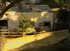Gawler Gas Works 2 1982