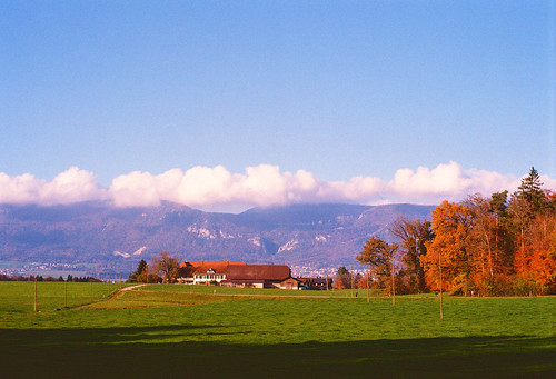 Farm in front of the Jura