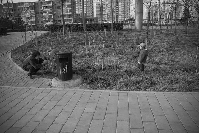 Hide and Seek, Yuan Dynasty City Wall Park, Beijing
