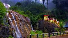 Waterfall - Tamil Nadu / Kerala Border