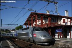 Alstom TGV Atlantique – SNCF (Société Nationale des Chemins de fer Français) / TGV (Train à Grande Vitesse) n°342
