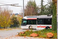 TCL / Irisbus Cristalis ETB12 n°1813 et Iveco Urbanway 12 n°2419