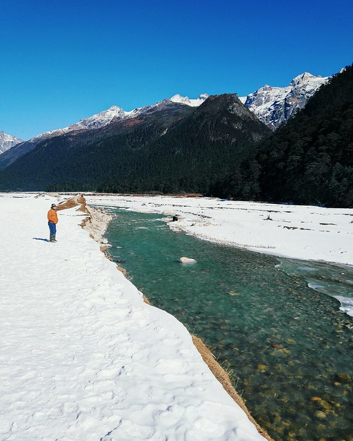 Yumthang Valley, Lachung, Sikkim, India