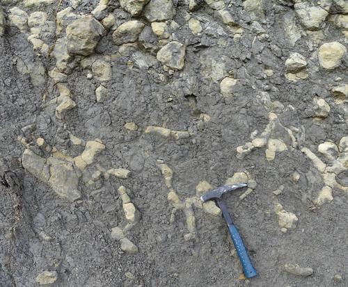 Burrows (Thalassinoides sp.) - Formación Cuevas Labradas (Lias) - Arroyofrío, Jurisdicción de Dehesa de Santiago (Albacete, España) - 03
