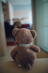 Teddy bear sitting on the bed. Backview closeup.