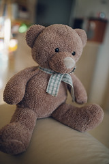 Teddy bear sitting on the bed