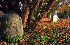 "Cincinnati - Spring Grove Cemetery & Arboretum ""Ivy Headstone At Evening"""