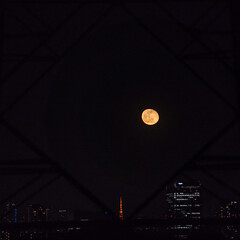 Moon and Tokyo Tower through the power transmission tower