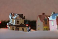 Winter in miniature