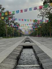 mexican confetti pass