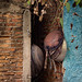 Pots and Colorfull Wall,  Photo Walk #87, Tha Phra