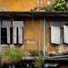 Wall and Windows,  Photo Walk #87, Tha Phra