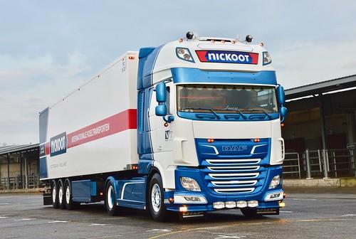 Nl-Nickoot Koeltransporten-Daf Xf 116