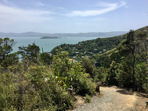 Matiu/Somes Island as seen from Days Bay